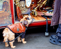 Whitby Steampunk Weekend Traders and Visitors. February 2018